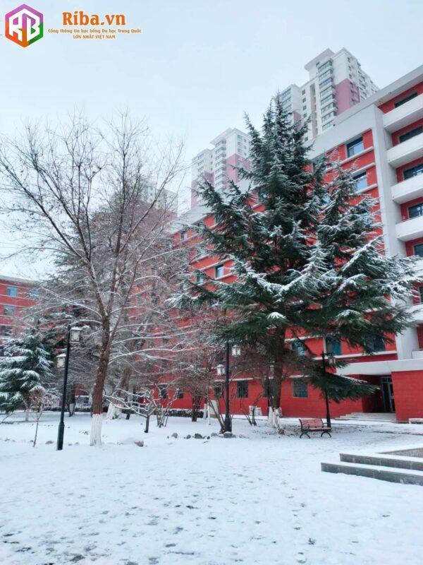 Review Về Trường Đại Học Lan Châu Trung Quốc