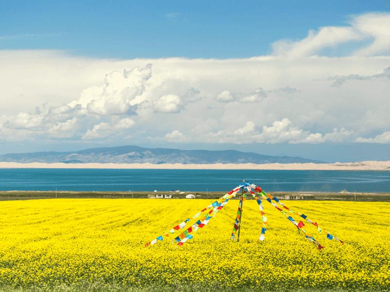 Hồ Thanh Hải – Hồ Nước Mặn Lớn Nhất Trung Quốc