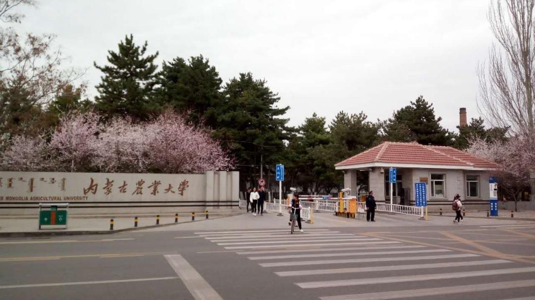 Bảng xếp hạng 10 trường đại học có diện tích lớn nhất Trung Quốc 2