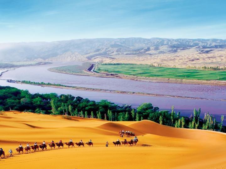 Ninh Ha 2021